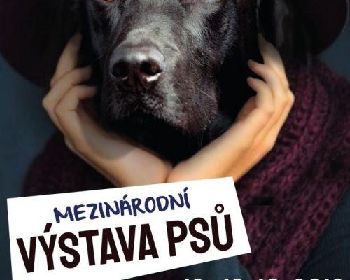 Setkáme se v Českých Budějovicích!