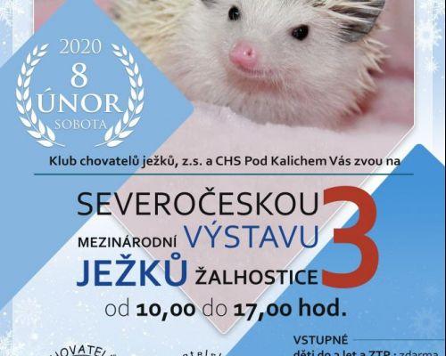 Mezinárodní výstava ježků
