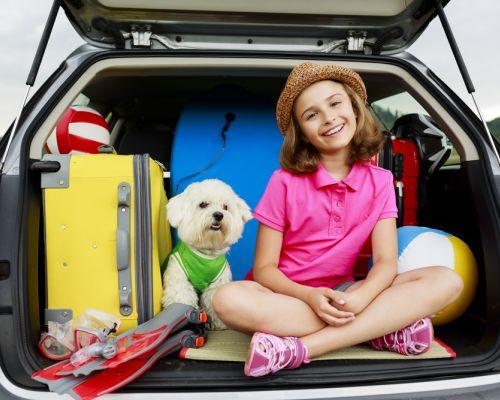 Přeprava psa v autě: jak na to?